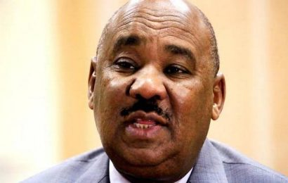 Sudan to postpone lifting of fuel subsidies, says minister