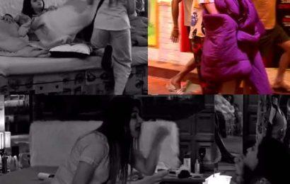 Bigg Boss 13: Rashami Desai ने Shefali Bagga पर फेंकी बोतल, तो Sidharth Shukla ने उठाया ये कदम, देखें वीडियो