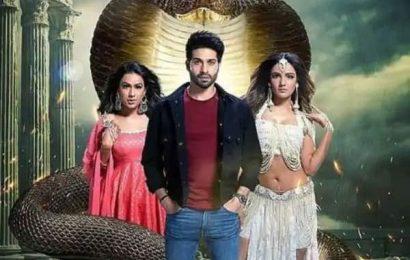 Naagin 4, December 28, written update: Brinda threatens to reveal Manas' truth; he kidnaps her   Bollywood Life