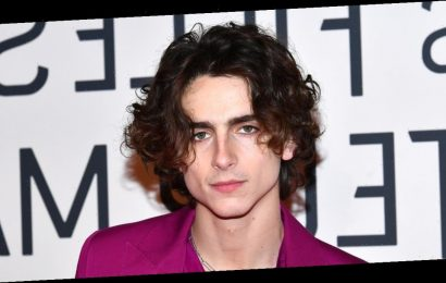 An Ode to Timothée Chalamet's Chiseled, Sharp, and Sexy Jawline