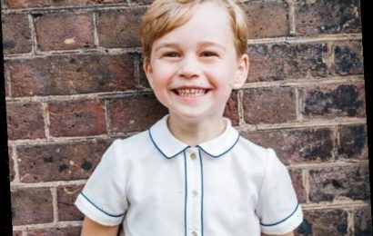 Prince George Joins Queen Elizabeth & More Royal Heirs in New Portrait