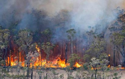'No doubt' climate change causing wildfires, experts say as Australia burns