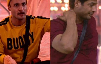 Bigg Boss 13: Fans feel Asim Riaz is maintaining peace with Sidharth Shukla as he wants to keep him as an option for the future – view poll results | Bollywood Life