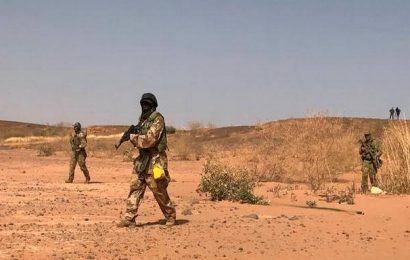 63 'terrorists', 25 others killed in Niger army base attack: defence ministry
