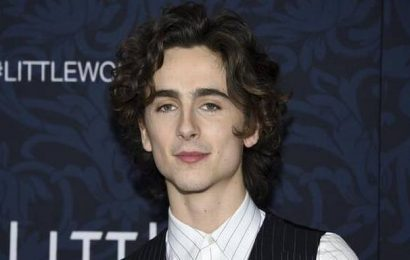 Timothee Chalamet to play Bob Dylan in biopic from James Mangold