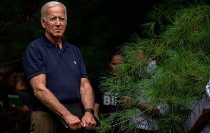Two moderates, Joe Biden and Pete Buttigieg, diverge on strategy to win