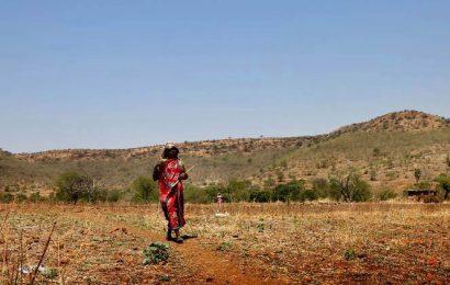 FRA in wildlife habitats: Experts express concern at govt haste