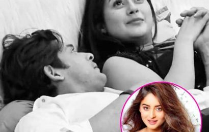 Bigg Boss 13: THIS is what Mahhi Vij feels about Shehnaaz Gill-Sidharth Shukla's complicated relationship  — read tweet | Bollywood Life