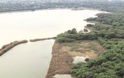 Plastic waste finds way to Sukhna choe, cleared later