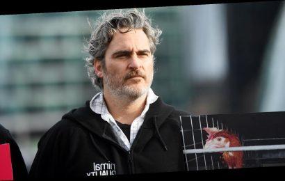 Joaquin Phoenix Urges People To 'Go Vegan' Ahead of BAFTAs 2020 Win!