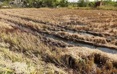 Oil leak reported in agriculture field in Thanjavur district