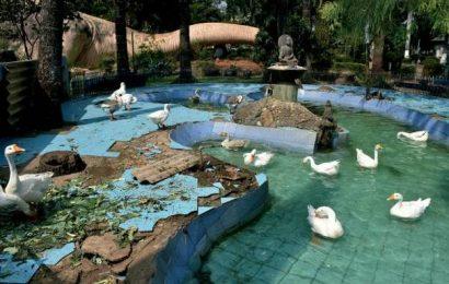Historically-significant Gandhi Park in Guntur now lies in neglect