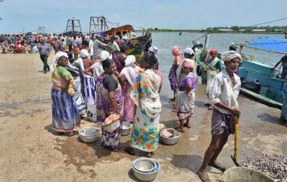 Dip in catch hits livelihood of Kerala fisherwomen