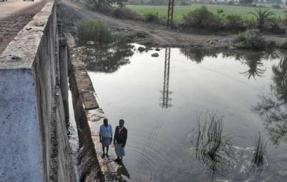 Adilabad farmers reap benefits of improved water management