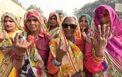 Delhi Assembly Election 2020: 132 centenarian voters, 110-year-woman oldest electorate