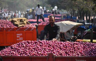 As onion prices tumble, Maharashtra farmers' groups urge Centre to lift export ban