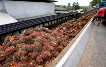Malaysia says palm oil dispute with India is 'temporary'