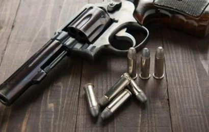 Class 9 Dehradun student shoots himself with father's licensed pistol: Police