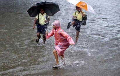 El Nino may be 'neutral', normal rains likely this year