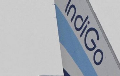 IndiGo says its revenue may take a big hit due to COVID-19