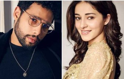 Siddhant Chaturvedi opens up on his nepotism snide to Ananya Panday: 'Internet made a thing out of it'