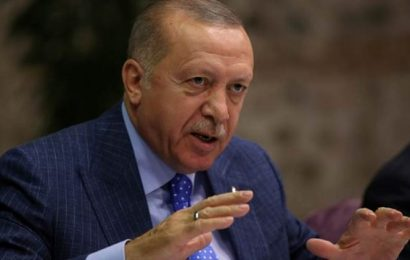 India hits out at Erdogan, British minister for 'irresponsible' comments over Delhi riots