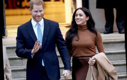 Meghan Markle and Prince Harry Deliver Free Meals in L.A. While'Dressed Down' in Jeans and Masks