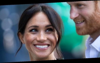 Prince Harry Accompanied Meghan Markle to the Recording of Her Disneynature Doc Narration