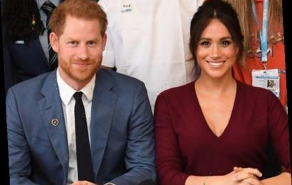 Prince Harry and Meghan Markle Announce New Organization Archewell