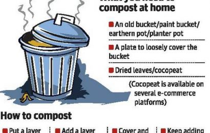 Composting in the times of COVID-19