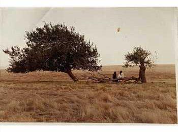 Renu Desai posts unseen pics of 'Badri'