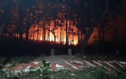 Large tracts of forests in Odisha engulfed in raging fire