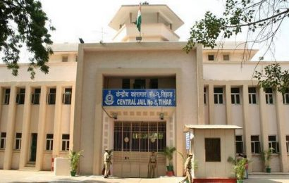 Woman lodged at Tihar Jail on murder ends life