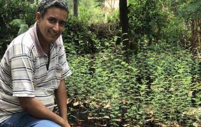 How Dapoli's Noshirwan Mistry is planning to save this year's mango harvest