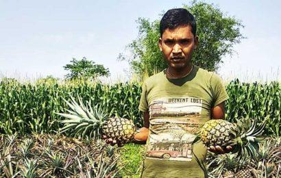 Covid-19 lockdown hits tea, pineapple growers in Bihar; farmers dump produce