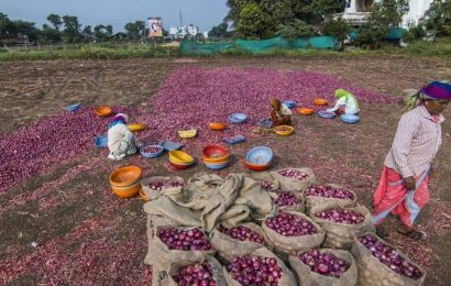 Govt keeps watch on onion prices after Lasalgaon shuts operations
