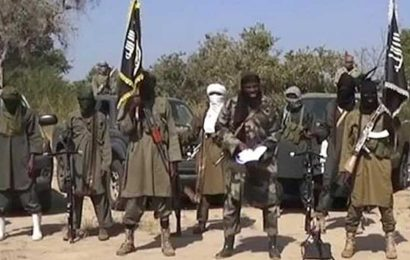 44 suspected members of Boko Haram found dead in Chad prison: Report
