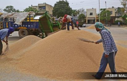 In Punjab, procurement pace better than '19  — 61% more wheat purchased