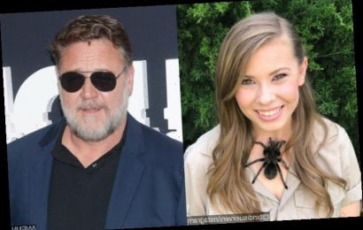 Bindi Irwin Gives Russell Crowe's 'Beautiful' Wedding Gift a Hug to Commemorate His Birthday