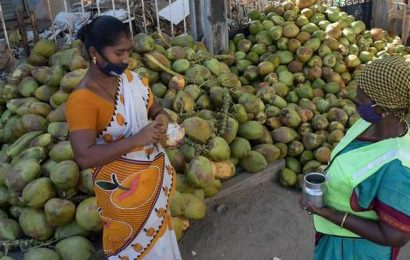 This couple in Chennai quenches the thirst of conservancy workers with free tender coconuts