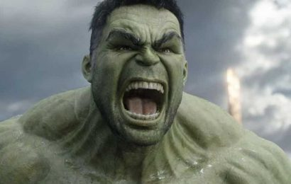 The real reason Mark Ruffalo hasn't starred in a solo Hulk movie for Marvel: 'It'll never happen'