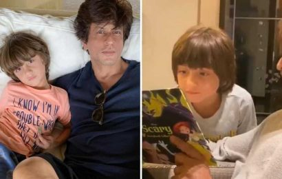 Inside AbRam's birthday celebrations with 'favourite person' Shah Rukh Khan reading horror stories, watch video