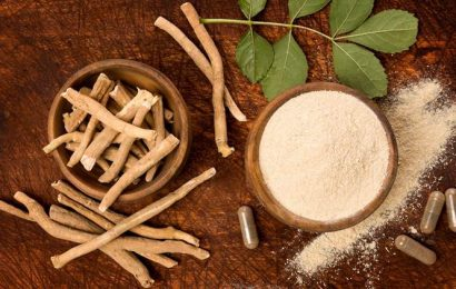Ashwagandha can help fight COVID-19, claims IIT-Delhi research
