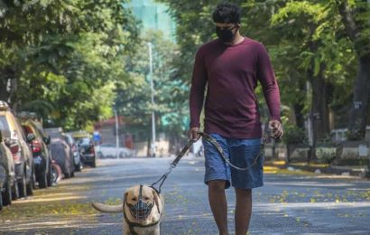 Pune dog lovers rescue pets abandoned due to coronavirus fears