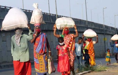 Day after biggest single-day spike, Odisha records another 79 Covid-19 cases