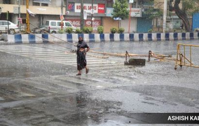 After thunderstorm, reports of uprooted trees, falling structures from across Pune
