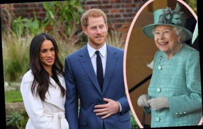 Prince Harry Was ONLY Allowed To Marry Meghan Because She Was Biracial?!