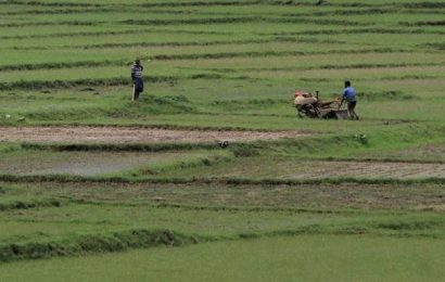 States to be incentivised to implement farm reform agenda