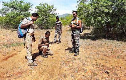 Wildlife monitoring begins in Sathyamangalam Tiger Reserve