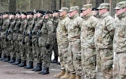 Consult allies on future troop plans, NATO chief tells US